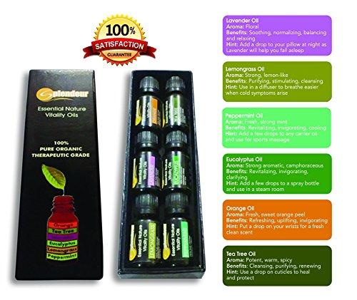 Aromatherapy Oils TOP 6-100% PURE ORGANIC THERAPEUTIC GRADE Essential Oils GIFT Set(Eucalyptus-Flu /Lavender-Cuts /Lemongrass-Fungus /Orange-Skin /Peppermint-HeadAche /TeaTree-Anticeptic)FREE EO Book!