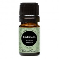 Ravensara 100% Pure Therapeutic Grade Essential Oil by Edens Garden- 5 ml