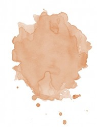 Studio 78 Paris – All Natural & Organic Bi-Phased Foundation (We Revitalize) (Enhancing Dew)