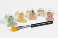 CONCEALER & CORRECTOR Kit with BRUSH *Choose Your Size and Concealer Shade* Mineral Makeup Set Bare Skin Face Foundation Powder (5 gram Sample Size Jars, Light Concealer)